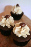 cupcake photos 015