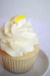 cupcake photos 016