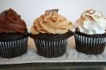 cupcake photos 020