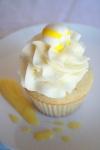 cupcake photos 023
