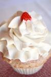cupcake photos 030